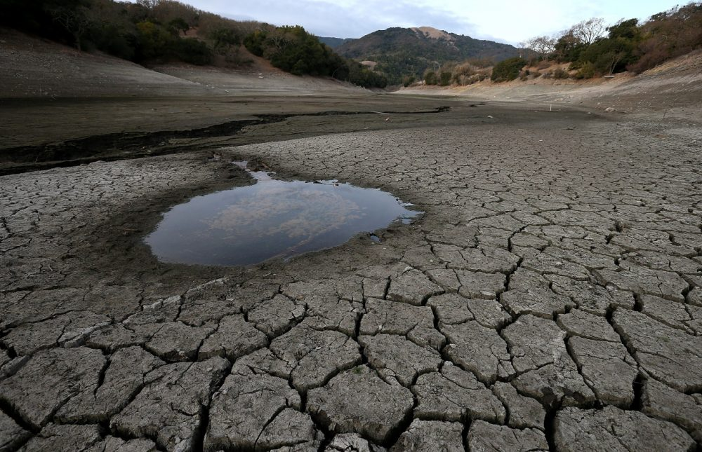 A small pool of water is surrounded by dried and cracked earth that was the bottom of the Almaden Reservoir on January 28, 2014 in San Jose, California. Now in its third straight year of drought conditions, California is experiencing its driest year on record, dating back 119 years, and reservoirs throughout the state have low water levels. (Justin Sullivan/Getty Images)