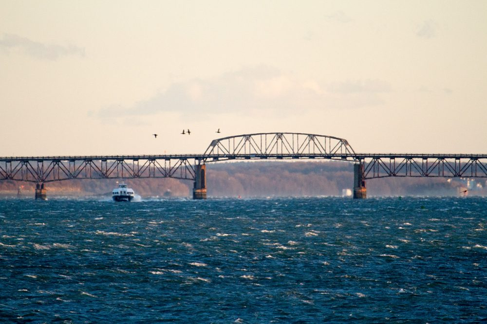 The Long Island bridge is seen in January, months after it was closed. It has since been demolished.  (Jesse Costa/WBUR)