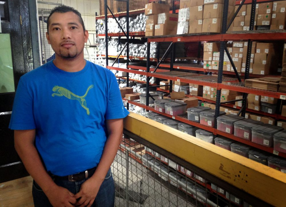 Jaime Martinez Eriqueros was in the gang MS-13 from the age of 15 until he was 28. He now works at the League Collegiate Wear factory in Ciudad Arce, El Salvador. (Fred Thys/WBUR)
