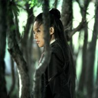 "Qi Shu stars in Hou Hsiao-Hsien's 2015 film, ""The Assassin."" (Courtesy IFFBoston)"