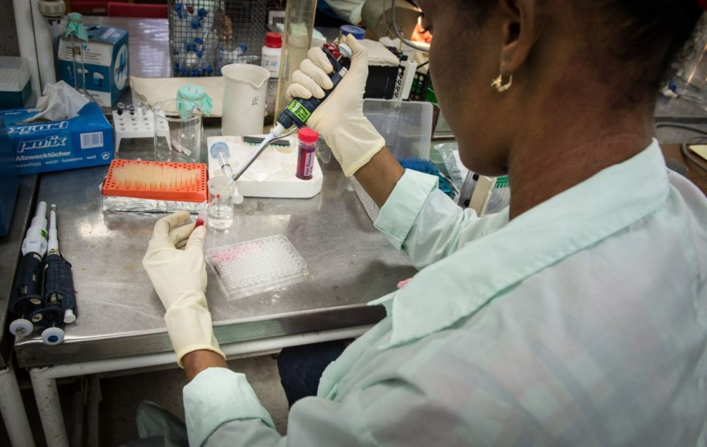 A lab technician works at the Center for Genetic Engineering and Biotechnology in Camaguey, Cuba on June 19, 2015. Cuban scientists are working on a vaccine for prostate cancer. (Adalberto Roque/AFP/Getty Images)