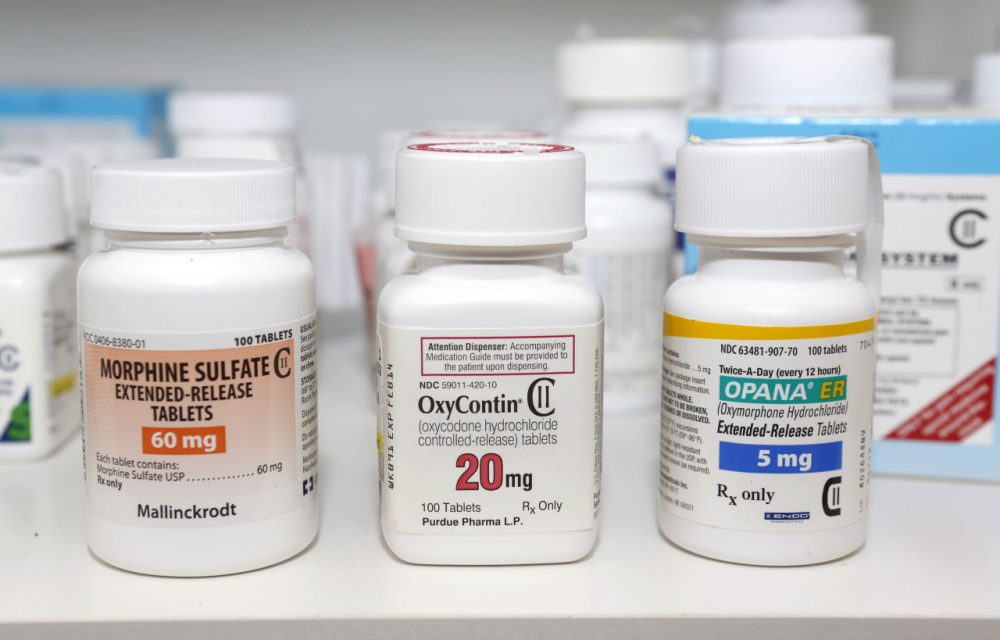Morphine Sulfate, OxyContin and Opana are displayed for a photograph in Carmichael, California, on Jan. 18, 2013. (Rich Pedroncelli/AP)