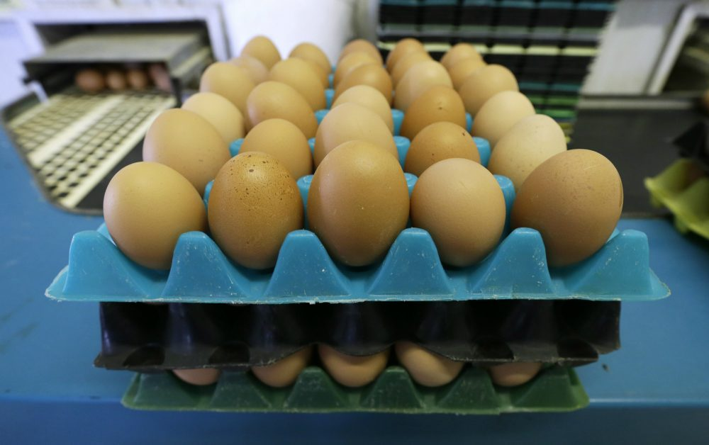 "<em>William A. Masters and Jennifer Hashley: ""The poorest often depend on SNAP or WIC benefits that do not adjust when healthier foods like fresh eggs become more expensive relative to less nutritious items.""</em> Pictured: Eggs laid by cage-free chickens sit in a holder after being sorted at a farm near Waukon, Iowa. (Charlie Neibergall/AP)"