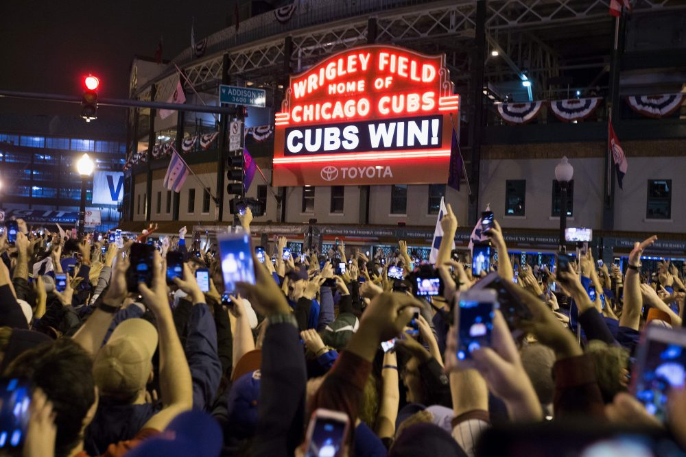 Cubs Win, the Woman's In