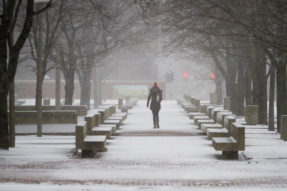 A woman walked through City Hall Plaza during the storm. (Jesse Costa/WBUR)