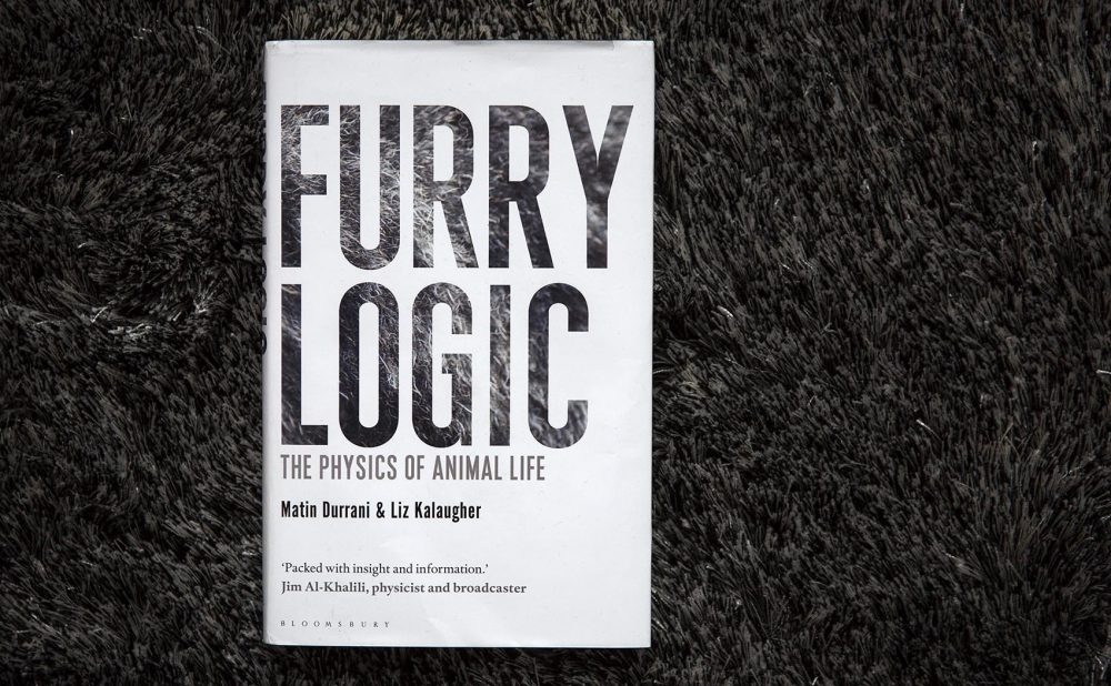 """Furry Logic,"" by Martin Durrani and Liz Kalaugher. (Robin Lubbock/WBUR)"