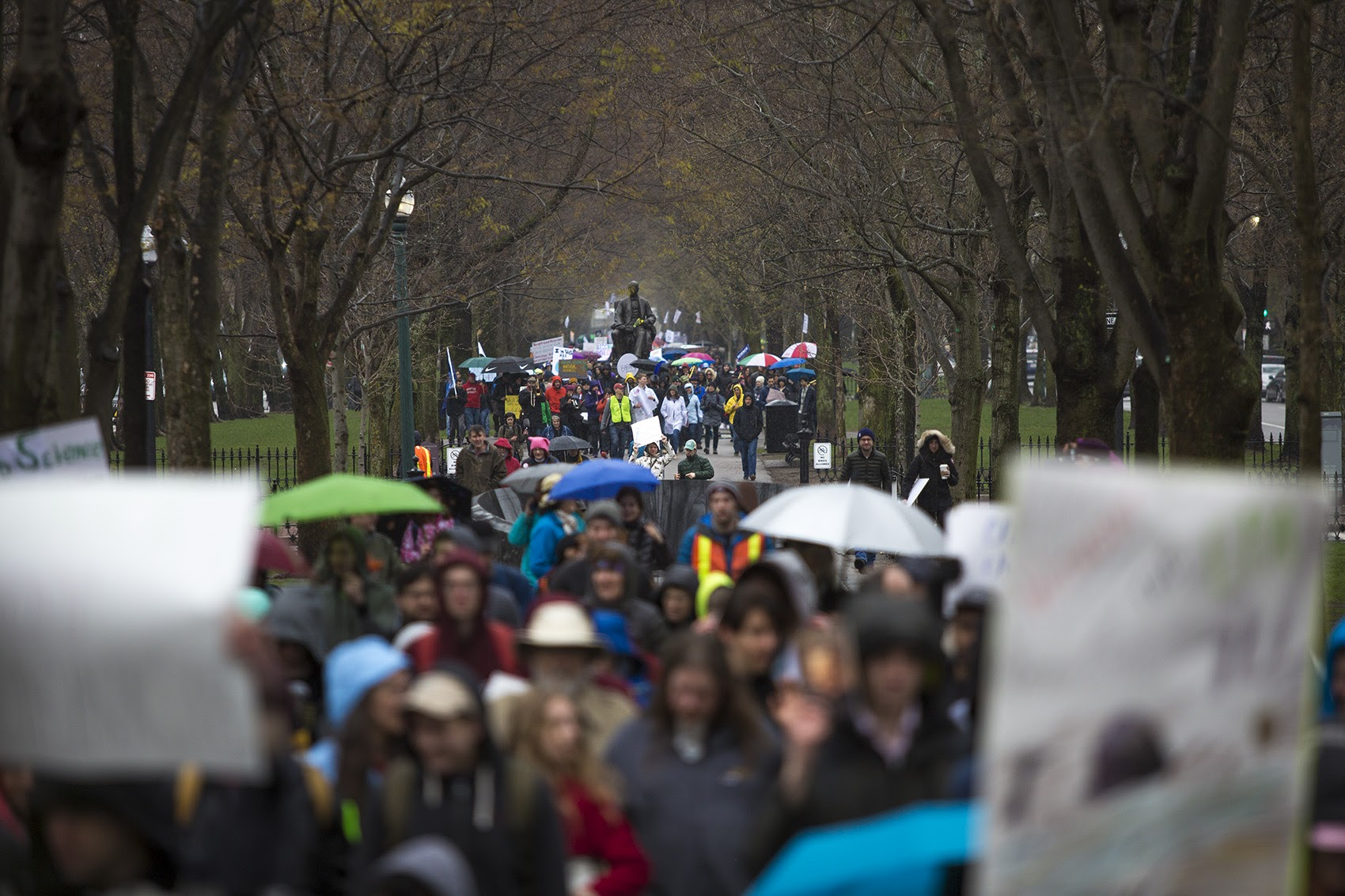 Harvard and MIT students, faculty and alumni march down the Commonwealth Avenue Mall Saturday. (Jesse Costa/WBUR)