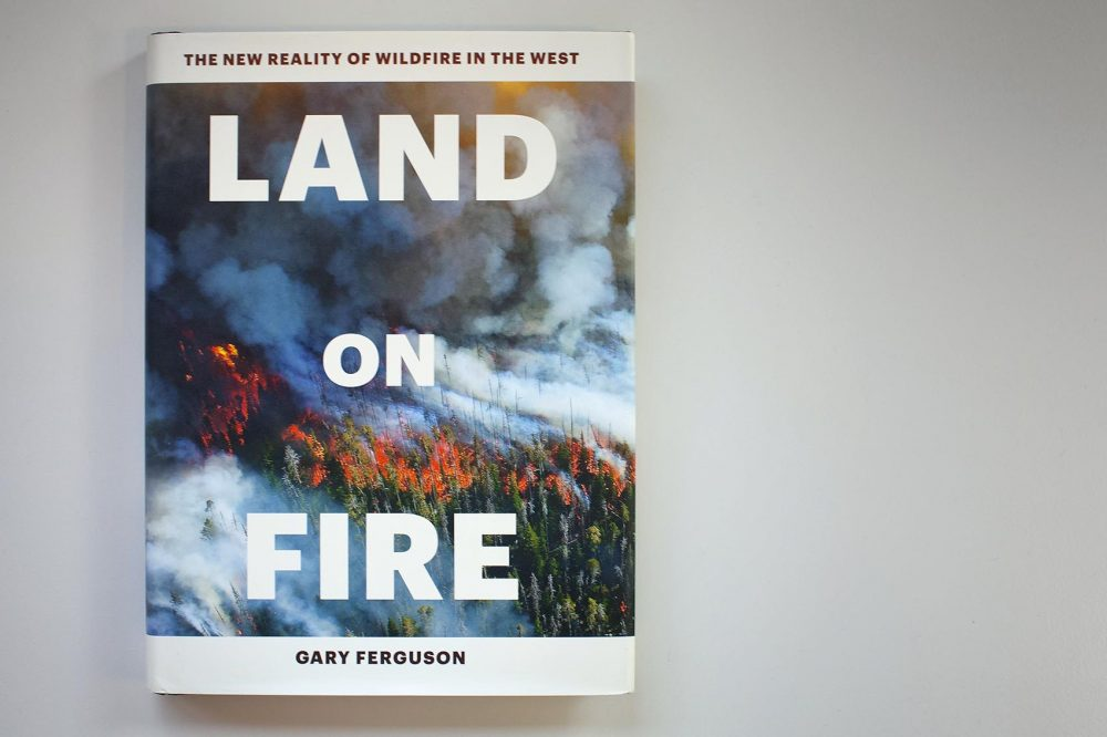 """Land on Fire,"" by Gary Ferguson. (Jackson Mitchell/Here & Now)"
