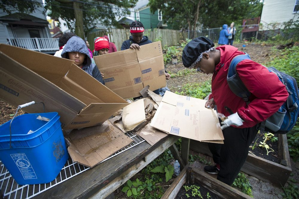 Green, right, and others prepare cardboard boxes, which will then be used in the Ellington Street garden as a proxy for landscaping fabric. (Jesse Costa/WBUR)