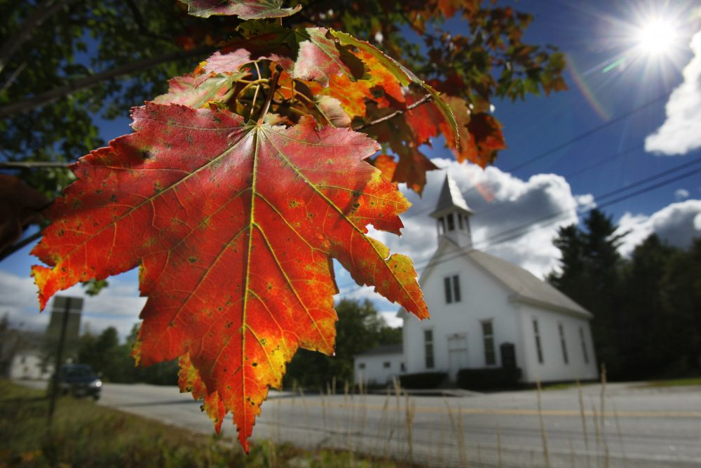 In this Sept. 17, 2010 file photo, a maple tree shows its fall colors in Woodstock, Maine. (Robert F. Bukaty/AP)