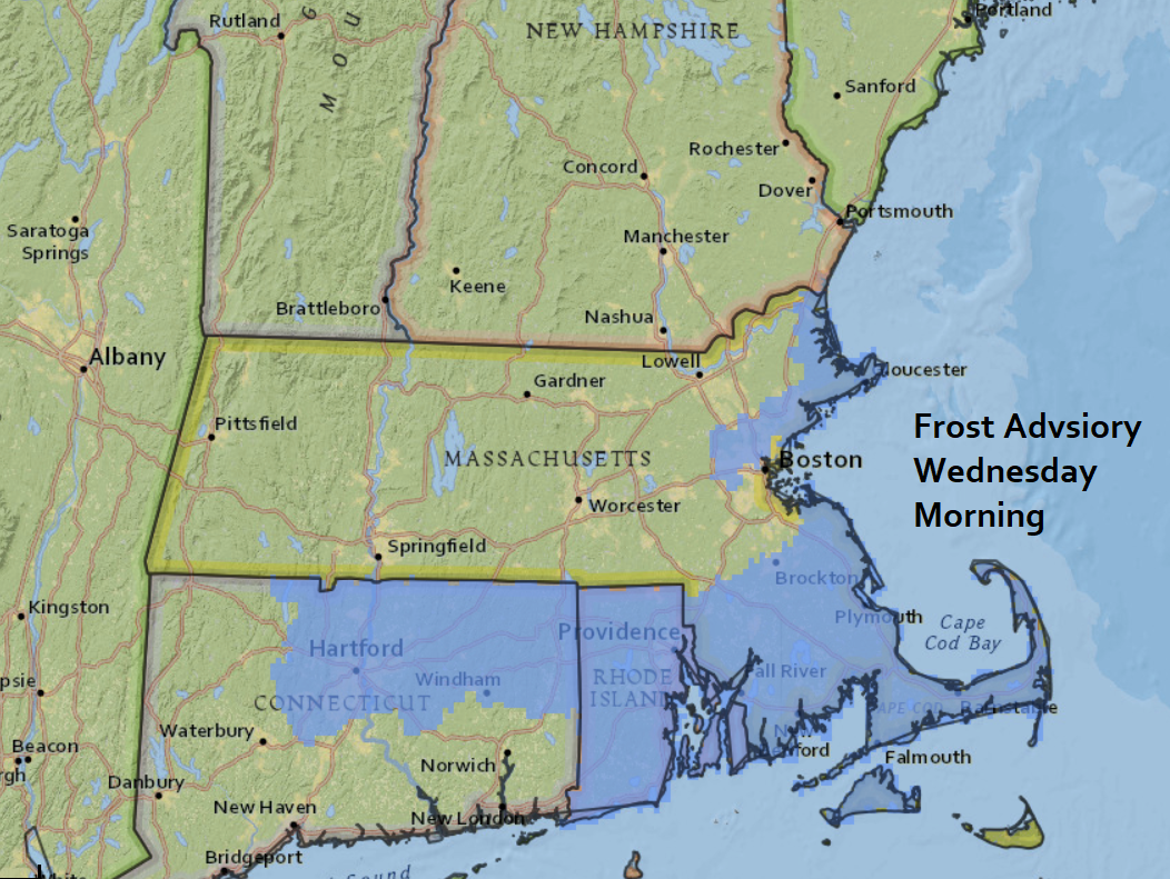 Frost is likely in areas which haven't seen one yet Wednesday morning. (Dave Epstein/WBUR)