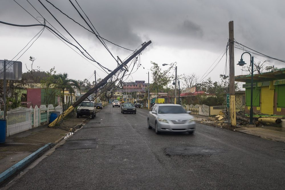 Downed powerlines along a main street in Barcenoleta, in early October (Jesse Costa/WBUR)
