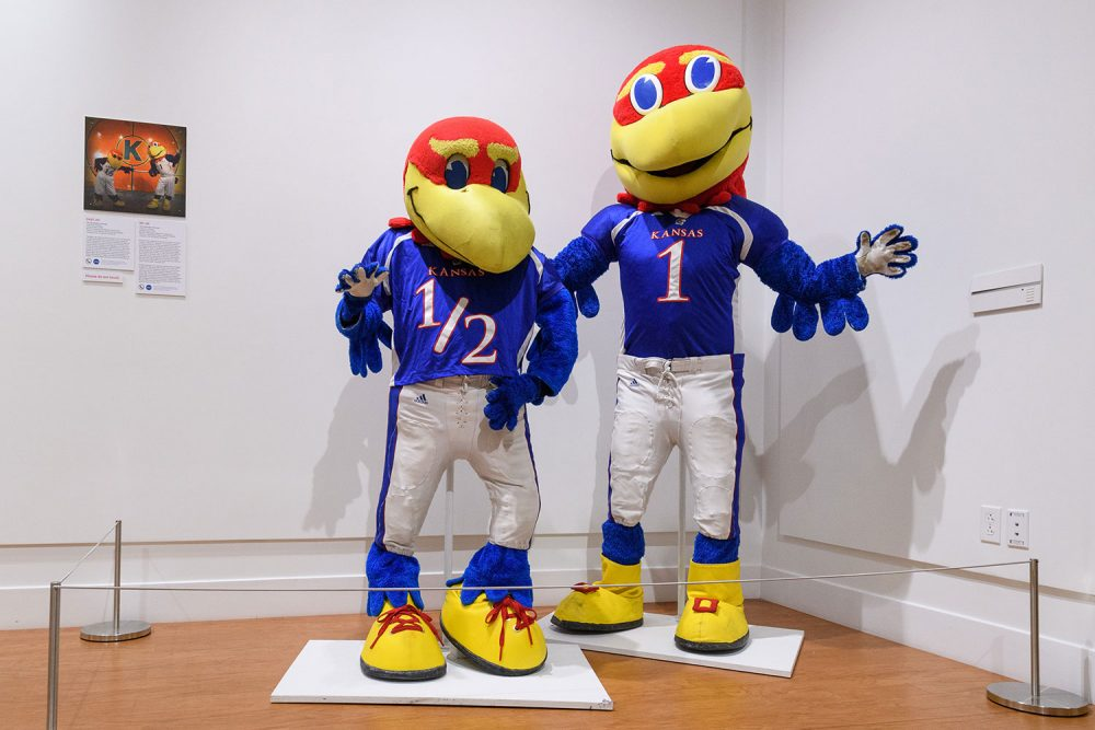 "Baby Jay (left) and Big Jay from the University of Kansas at Lawrence. ""Baby Jay is more playful and goofy and happy. Big Jay is more serious,"" Bell says. (Courtesy Ballard Institute and Museum)"