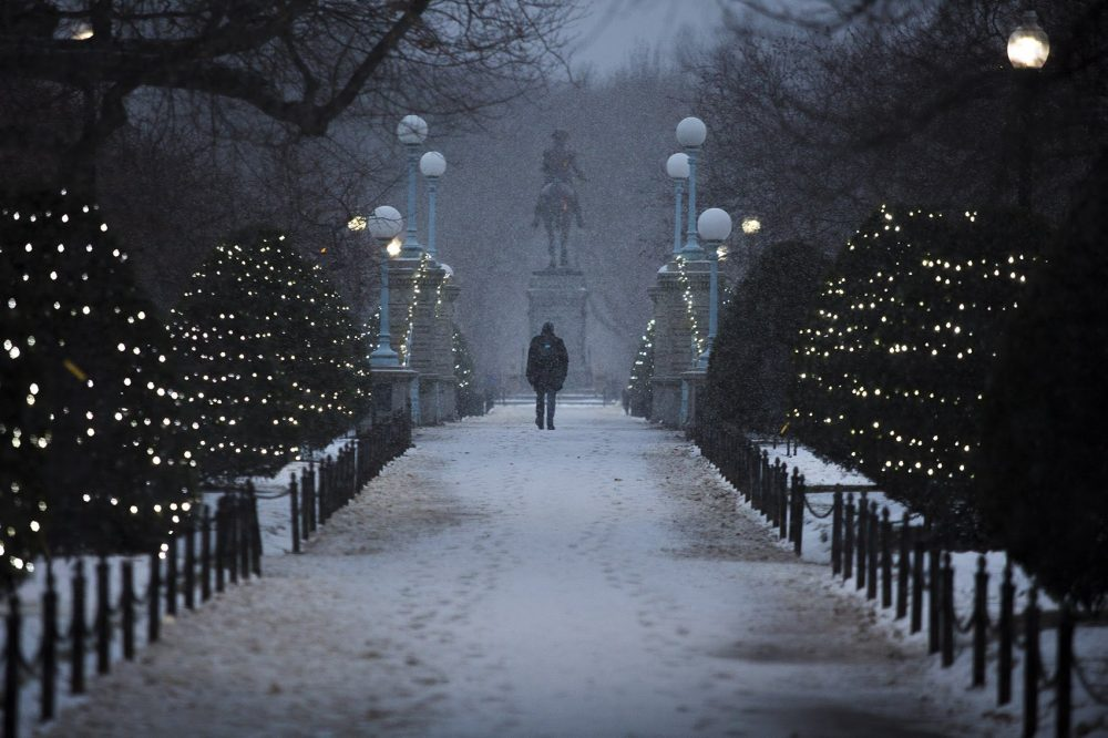 A man walks down the path across the bridge over the pond in the Boston Public Garden on Thursday, Jan. 4. (Jesse Costa/WBUR)