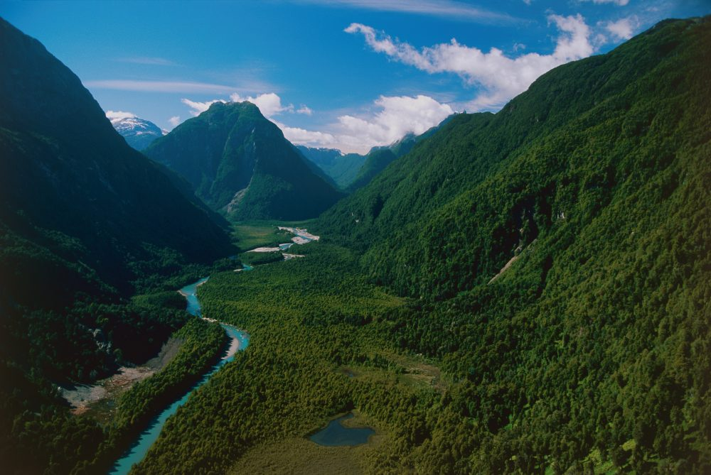 A view of Pumalín national park in Chile. (Courtesy Tompkins Conservation)