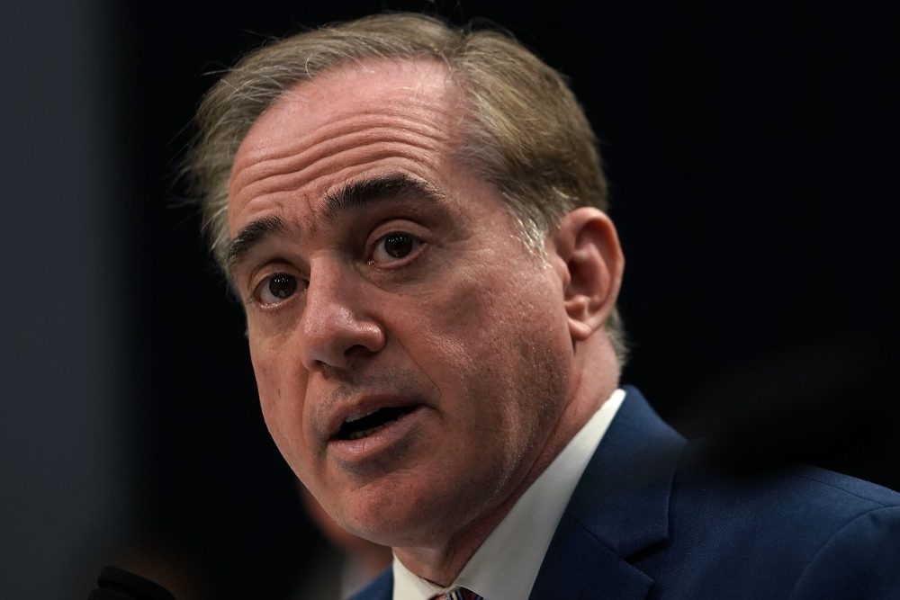 U.S. Secretary of Veterans Affairs David Shulkin testifies during a hearing on March 15, 2018 on Capitol Hill in Washington, D.C. (Alex Wong/Getty Images)