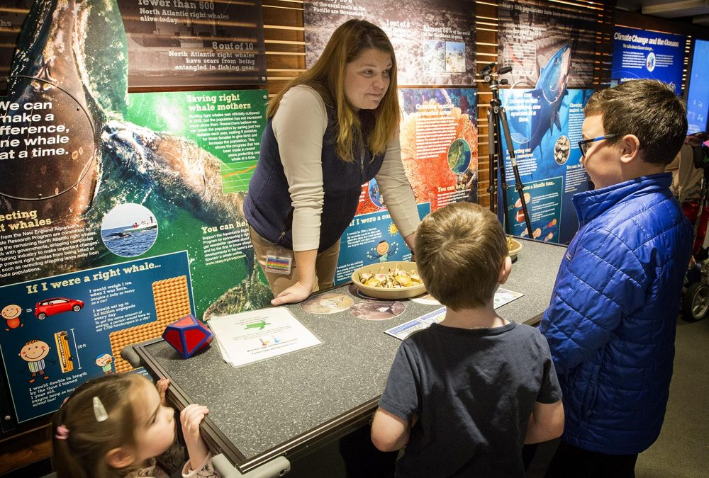 In front of the climate change exhibit, Jordan talks with young visitors to the aquarium. (Robin Lubbock/WBUR)