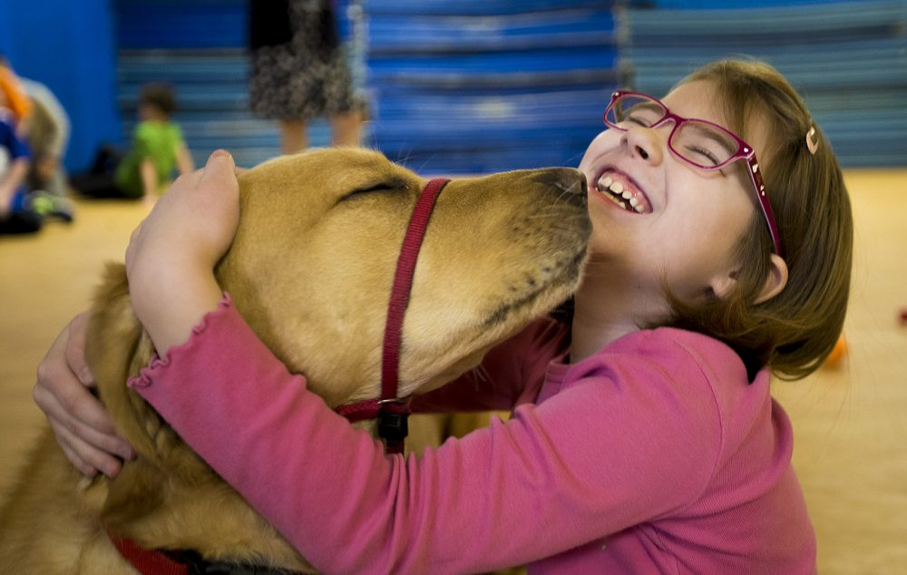 Franklin gets a great big hug from Maddie Tetreault. (Jesse Costa/WBUR)