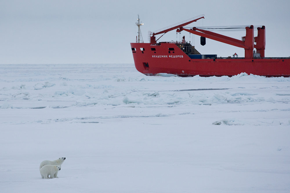 Researchers Wrap Up Largest Polar Expedition In History To Better Understand Climate Change