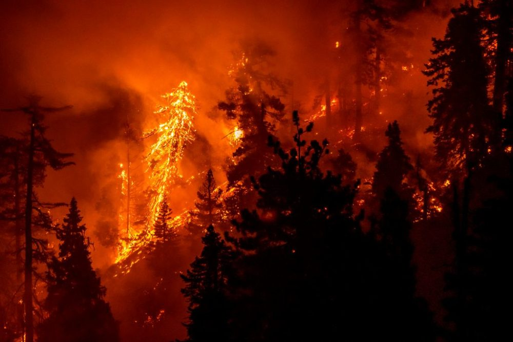 Rising Temperatures From Climate Change And Extreme Wildfires Go 'Hand-In-Hand,' Scientist Says - Here And Now