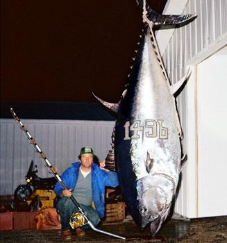 Ken Fraser with the largest tuna ever caught, off Nova Scotia in 1979.