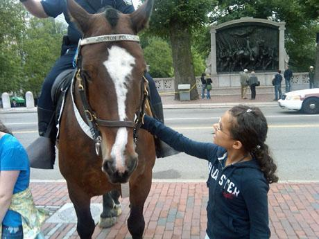 A young girl pets Clancy, one of 11 horses in the Boston Police Department's mounted unit, outside the State House on June 9. (Steve Brown/WBUR)