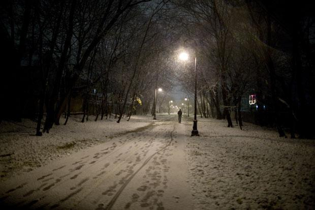 Snow fell along the Grove-Cedar path in Davis Square, Somerville. (David Aquilina/starkindler.us)
