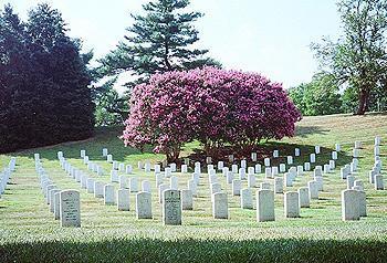 Arlington National Cemetery in 2009. (Alex Ashlock/WBUR)