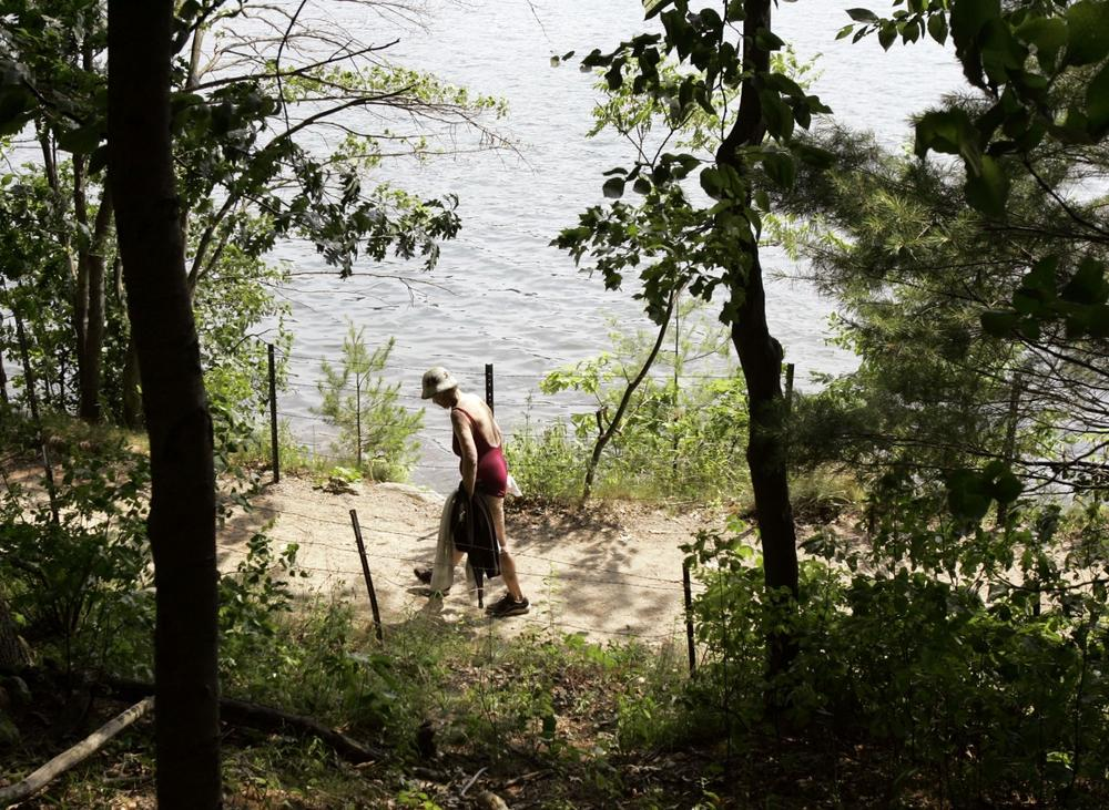 A woman walks along a trail at Walden Pond in Concord, Mass., June 2007. A Harvard study focused on invasive plants around the pond. (AP Photo/Elise Amendola)
