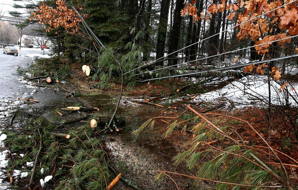 Fallen trees hang on utility wires in East Derry, N.H. on Saturday. Utility crews pushed through deep drifting snow and fallen trees to restore electricity to homes and businesses that lost power during a slow-moving winter storm that pounded the Northeast with heavy snow, rain and hurricane-force winds. (AP)
