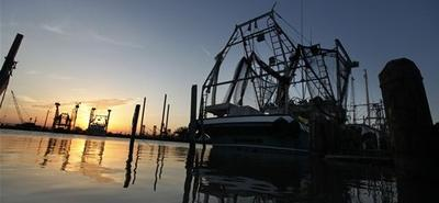 Shrimping and fishing boats are seen docked at sunrise in Venice, La. (AP)