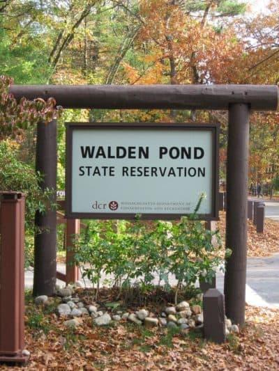 The entrance to Walden Pond. (Herzogbr/Flickr)