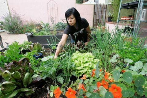 A backyard garden in Long Beach, Calif. (AP)