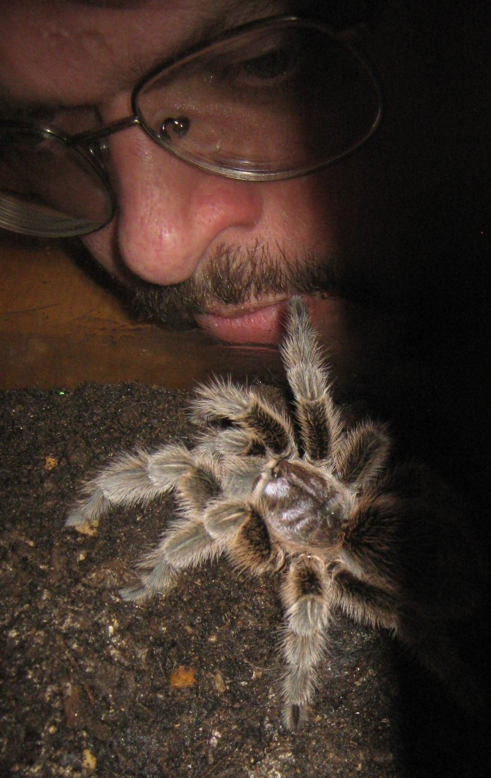 Author Grice gets up close and personal with a Tarantula. (Random House)