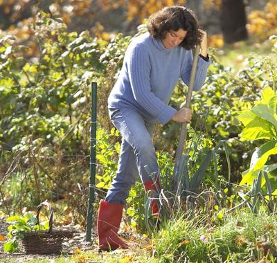 Here & Now's Kathy Gunst is hard at work in her garden.
