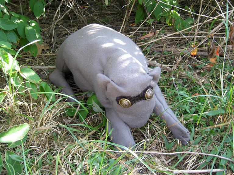 "We found one! A ""Bumpkin"" in its natural habitat. (Andrea Shea/WBUR)"