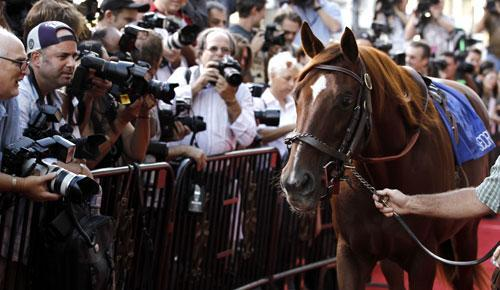 """Trolley the horse arrives at the premiere of """"Secretariat"""" in Los Angeles, Sept. 30, 2010. (AP)"""