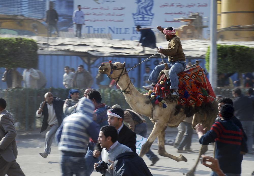A supporter of President Hosni Mubarak, on camel, fights with anti-Mubarak protesters in Cairo, Egypt. (AP)