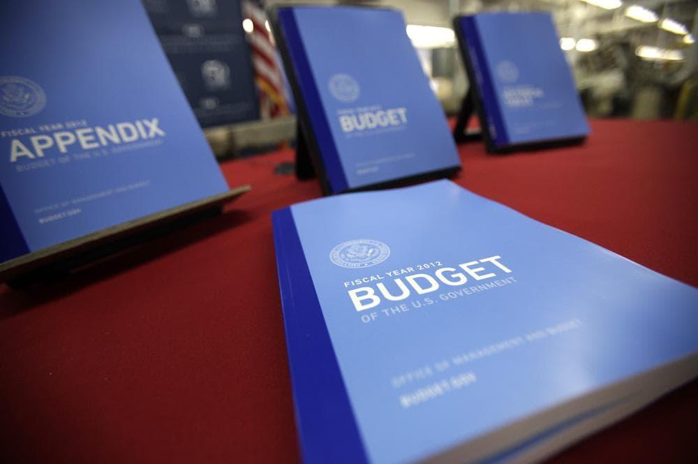 The 2012 budget, on display at the U.S. Government Printing Office at Washington. (AP)