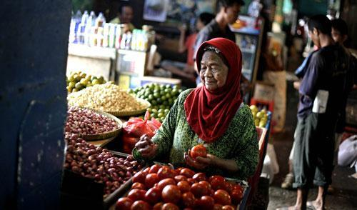A woman picks tomatoes at a fruit and vegetable stall at a market in Jakarta, Indonesia, January 2011. (AP)