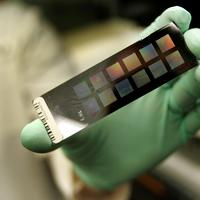An example of a slide used for testing DNA. (AP)