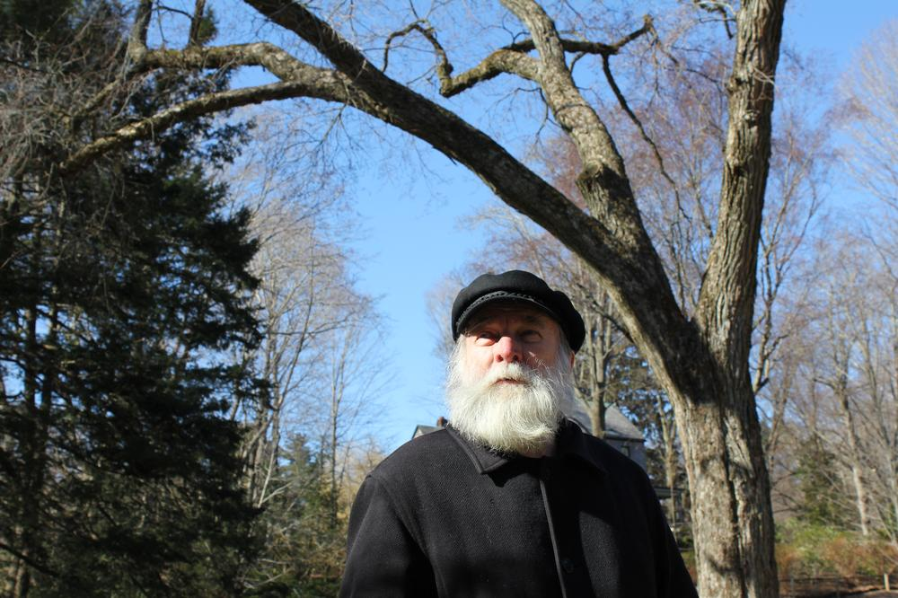 """Jamaica Plain activist and naturalist Gerry Wright, in character as Frederick Law Olmsted, stands under the """"Olmsted Elm,"""" a 200-year-old tree on the famed landscape architect's old property that is slated to be cut down. (Lisa Tobin/WBUR)"""