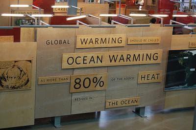 warming oceans can bring new health hazards