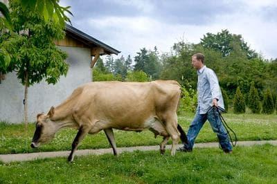 Kurt Timmermeister works on his farm (Courtesy/Clare Baroza)
