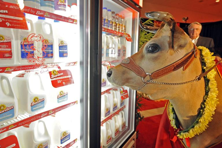 Elsie the Cow, Borden's celebrity spokescow in Lakeland, Fla. (PRNewsFoto/Borden Dairy Company)
