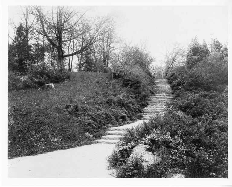 Franklin Park's 99 steps, designed by Olmsted (Courtesy Da Capo Press)
