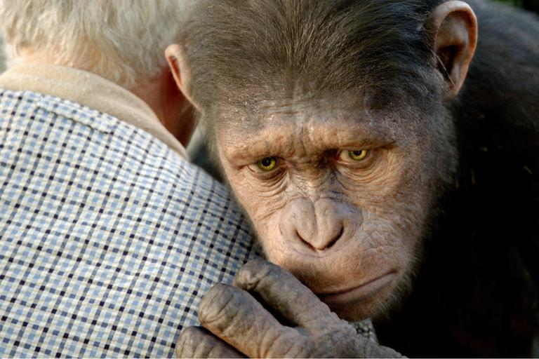 "In this image released by Twentieth Century Fox, Caesar the chimp, a CG animal portrayed by Andy Serkis is shown in a scene from ""Rise of the Planet of the Apes ."" (AP)"