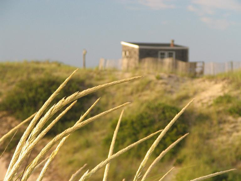 The dunes outside Provincetown (ptowndave/Flickr)