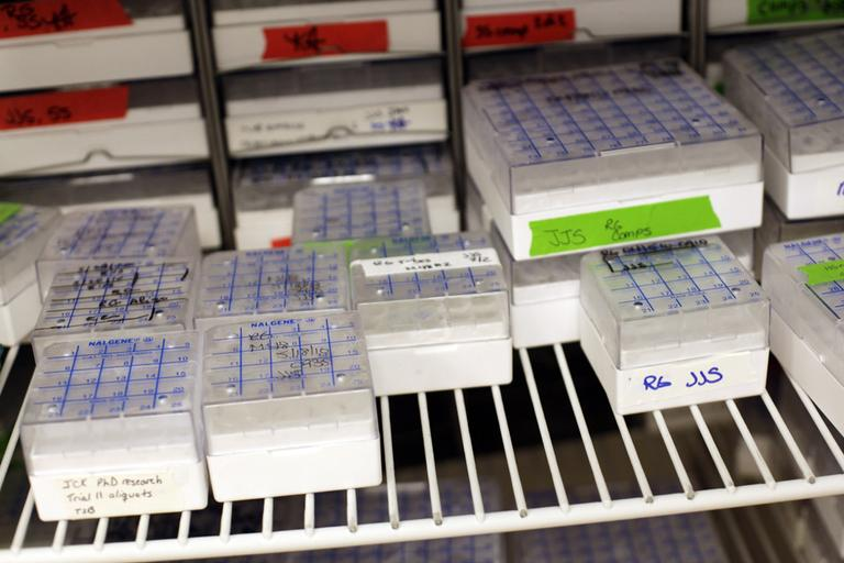 The ACLU has filed suit against the Cape and Islands District Attorney for keeping a Massachusetts man's DNA on file despite never being charged of a crime. (AP)