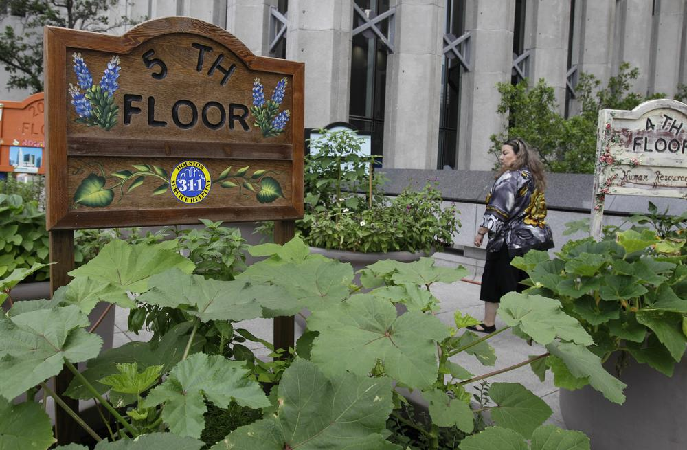 Houston city employee Belen Garza walks by pots filled with herbs and vegetables outside the public works building in downtown Houston. The garden is a cooperative effort by city officials and a nonprofit group. (AP)